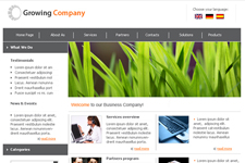 Web Template 3381